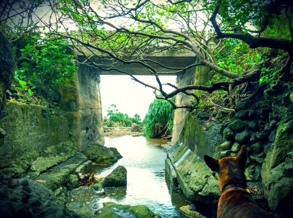 Start of Waterfall on Lanyu Island